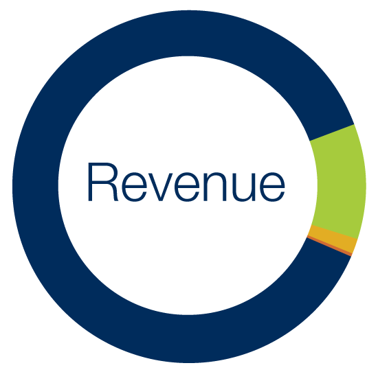 Revenue (2018-19 Fiscal Year)